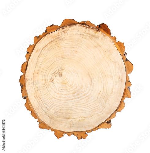 Photo Stands Wood log wood