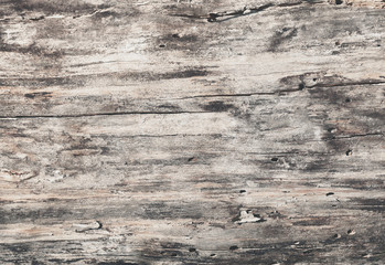 FototapetaWooden texture grey natural background with cracks, top view