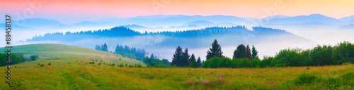 Foto auf Gartenposter Hugel Panorama of the summer morning in the foggy Carpathian mountains
