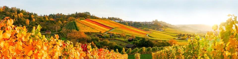 Sonnenuntergang in den Wein...