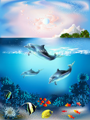 Fototapeta Delfin The underwater world with dolphins and plants