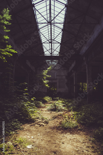 Papiers peints Les vieux bâtiments abandonnés Abandoned factory and vegetation