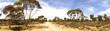 canvas print picture - outback road, australia
