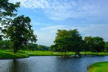 Beautiful Scene In Golf Course