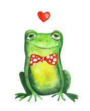 Frog In Bow Tie. Watercolor