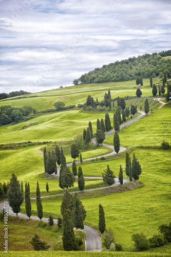 Beautiful landscape of Tuscany with the twisting road and cypresses