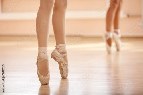 fototapeta na lodówkę Legs of young ballerinas, ballet dancing class