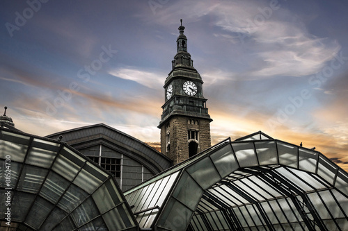 Foto auf Gartenposter Bahnhof Hamburg, Germany. Building of railway station