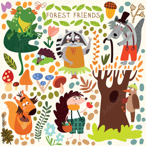 Vector Set of Cute Woodland and Forest Animals. Squirrel, frog,