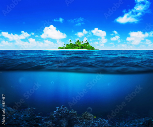 Poster Waterlelies Beautiful island with palm trees in the ocean. Underwater