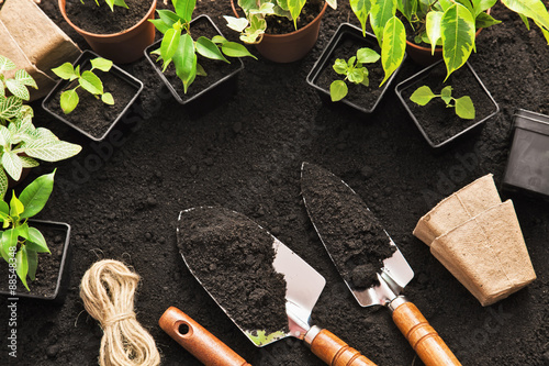Spoed Foto op Canvas Tuin Gardening tools and plants