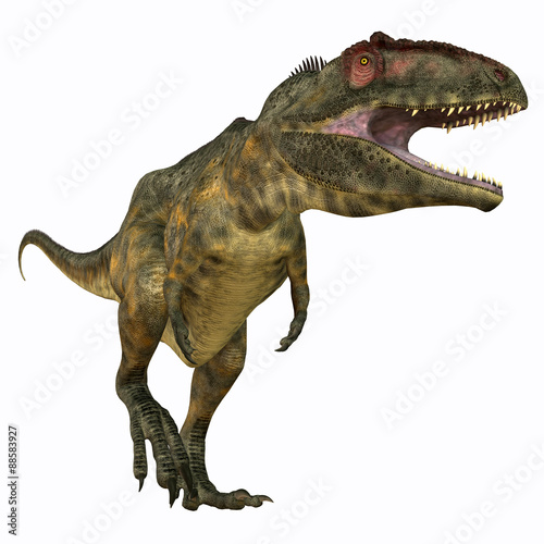 Fotografie, Obraz  Giganotosaurus Carnivore - Giganotosaurus was a theropod carnivorous dinosaur that lived in the Cretaceous Period of Argentina