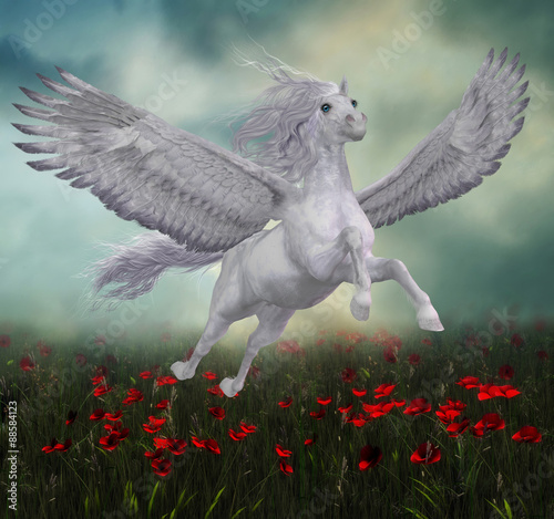Photo Pegasus and Red Poppies - A beautiful white Pegasus horse flies over a field of red poppies on wide spread wings