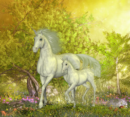 Obraz na płótnie Canvas Unicorns in Glen - A white mother unicorn leads her colt through the magical forest full of spring flowers.