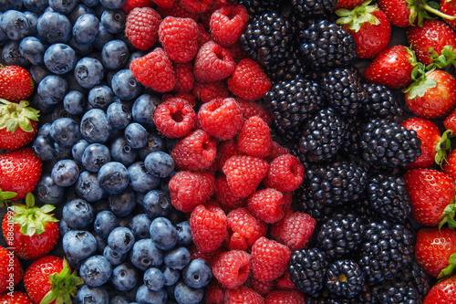 Staande foto Vruchten Healthy mixed fruit and ingredients from top view