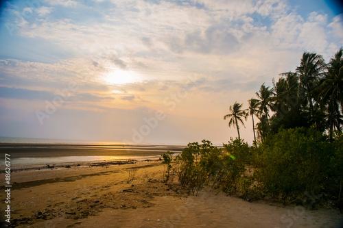 Fototapeta palms at sunset obraz na płótnie
