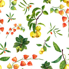Fototapeta Watercolor physalis, apples and other plants seamless pattern