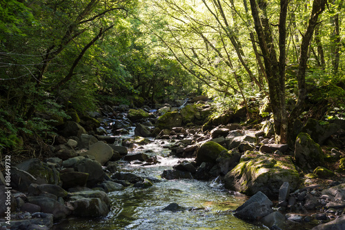 Fotografering  河原
