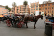 Horse, carriage horses, with coachman and bridle