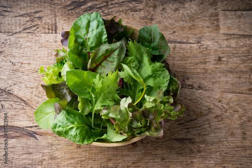 Fotografie, Obraz  green salad