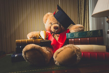 Toned Shot Of Teddy Bear In Graduation Cap Sitting At Library