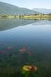 Plav Lake