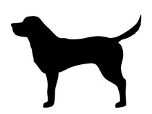 Labrador Retriever Dog. Vector Black Silhouette.
