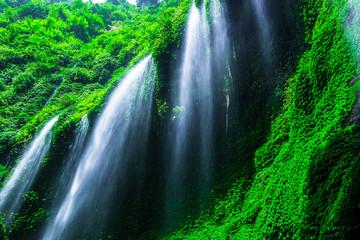 Panel Szklany Wodospad Madakaripura Waterfall in Bromo Tenger Semeru National Park
