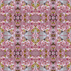 Obraz na PlexiBeautiful pink cherry blossom (Sakura) seamless pattern backgro