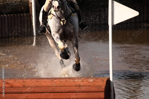 Horse at water jump. Horse and rider at a water jump competing in an equestrian competition.