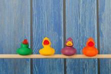 Funny Toy Ducks