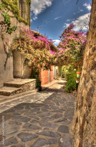 Fototapeta Ulica w Collioure, Francja wysoka