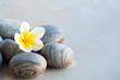 Plumeria flower and stones for spa background