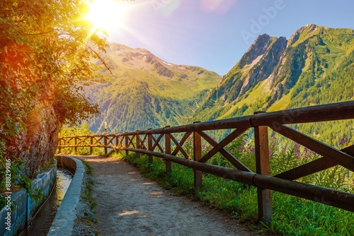 fototapeta na szkło Swiss Alps Sunny Trail