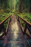 Wooden Trail Bridge - 88830108