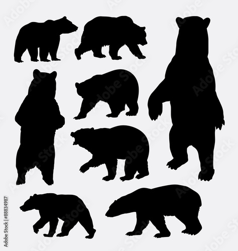 Photo  Bear wild animal silhouettes
