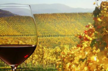 Panel Szklany Ein Glas Rotwein mit Aussicht