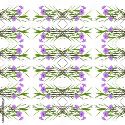 Photo  Popping Pod seamless pattern background