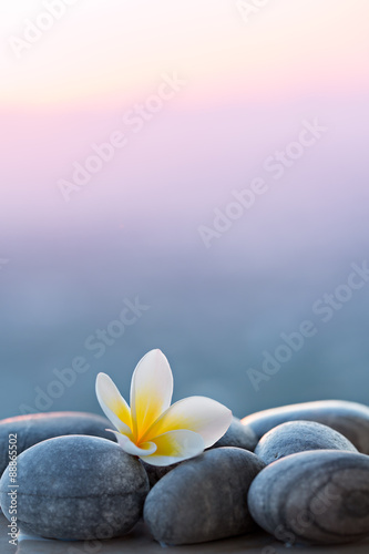 Photo  Plumeria flower and stones for spa background