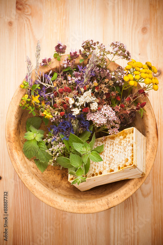 plakat Medicinal herbs and flowers. herbal medicine. top view, horizontal