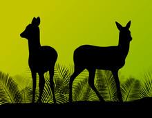 Deer Doe In Grass Field Vector Background