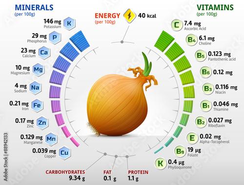 Fototapeta Vitamins and minerals of onion. Shallot bulb nutrition facts obraz