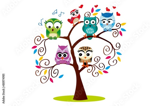 sowa,las,drzewo