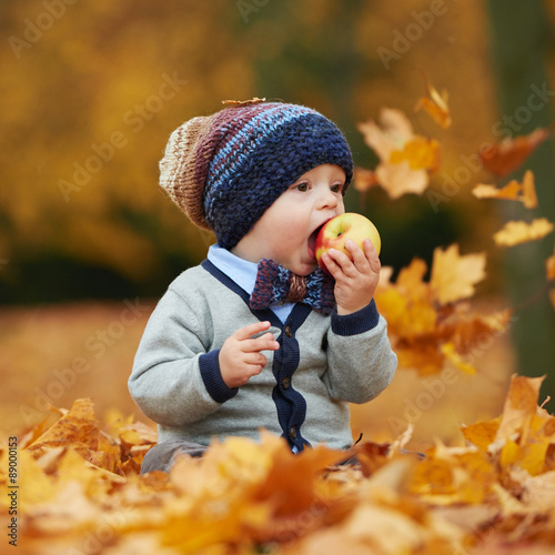 cute little baby in autumn park Poster