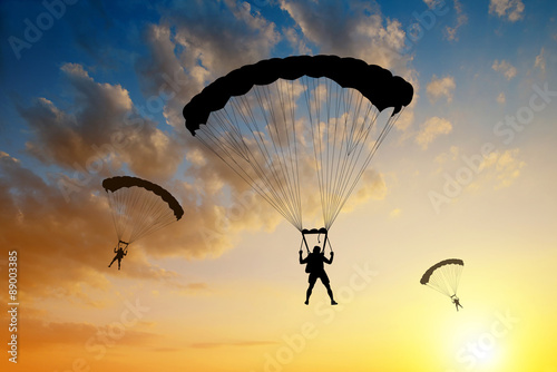 Recess Fitting Sky sports Silhouette skydiver parachutist landing