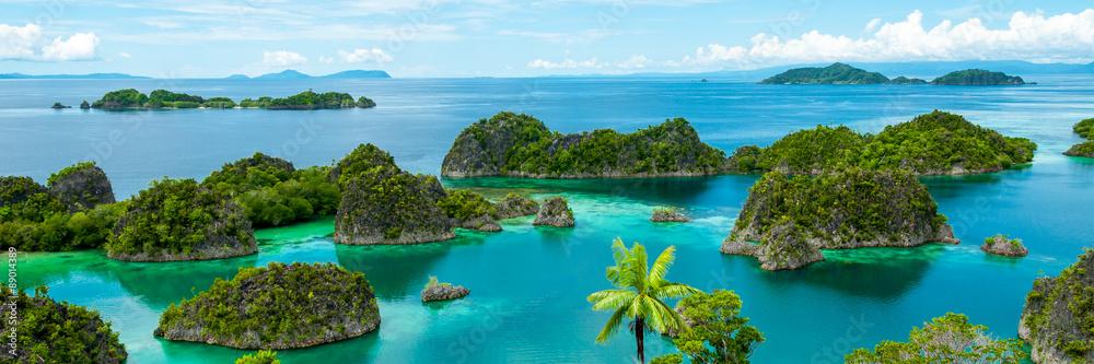 Fototapeta Fam Island in Raja Ampat