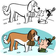 St. Bernard Rescue Dog