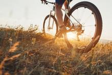 Low Angle View Of Cyclist Riding With Mountain Bike On Trail At