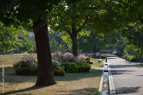 Parkweg Mit Bäumen Und Wasserrinne Buy This Stock Photo And