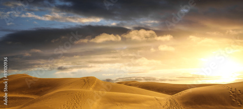 Photo Stands Desert alba sul deserto